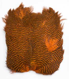 Bild på Keough Softhackle Patch Grizzly Orange