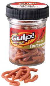 Bild på Gulp Earthworm Brun