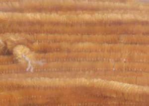 Bild på Standard Chenille Large (6mm) Ginger