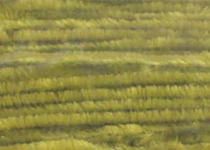 Bild på Standard Chenille Medium (4mm) Light Olive