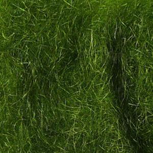 Bild på SLF Standard Dubbing Dark Green