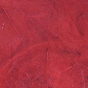 Bild på Cul De Canard (CdC) Red