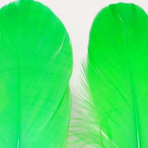 Bild på Gås Skulderfjäder / Goose Shoulder Green