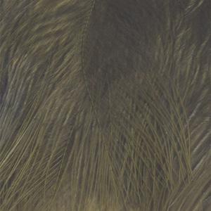 Bild på Marabou Fjäder (Plumes) Olive