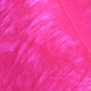 Bild på Marabou Fjäder (Plumes) Fl.Pink