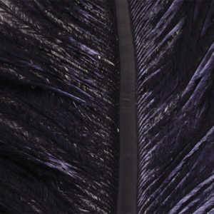Bild på Ostrich Herl (Struts) Black