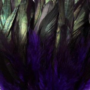 Bild på Tupphackel Badger Purple