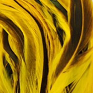 Bild på Tupphackel Badger Yellow