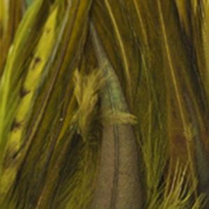 Bild på Tupphackel Badger Olive