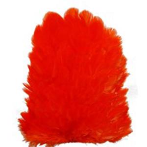 Bild på Hönssadel Orange