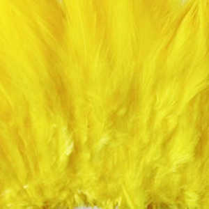 Bild på Whiting/Feathermaster Tuppsadel Yellow