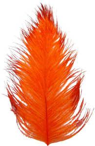 Bild på Tip Dyed Ostritch (Struts) Orange/Red
