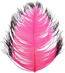 Bild på Tip Dyed Ostritch (Struts) Hot Pink/Black