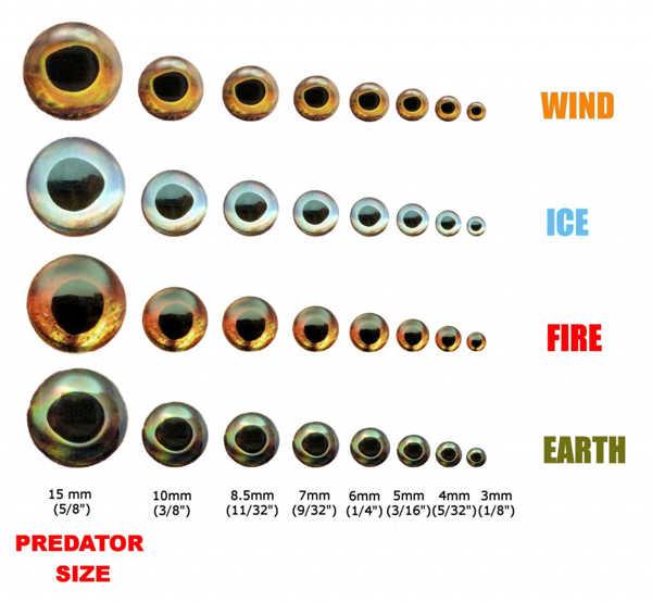 Bild på Fish Skull Living Eyes