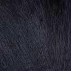 Bild på American Opposum Black