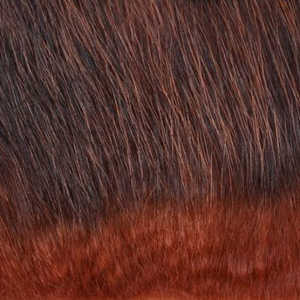 Bild på American Opposum Light Fiery Natur
