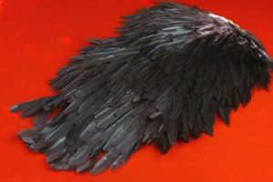 Bild på Signature Hen Saddle Natural Black