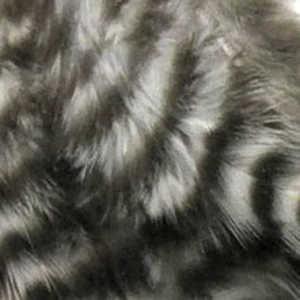 Bild på Tupphackel Grizzly Natural