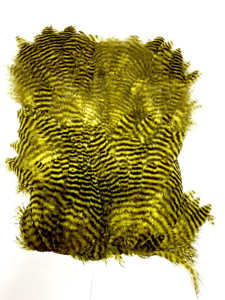 Bild på Keough Softhackle Patch Grizzly Golden Olive