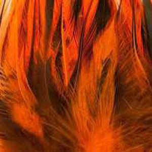 Bild på Tupphackel Badger Fluo Orange