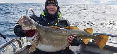 Nordnorge - kallt vatten & stor skrei!
