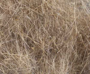 Bild på Swiss CDC Argentinian Hare Dubbing Pale Brown