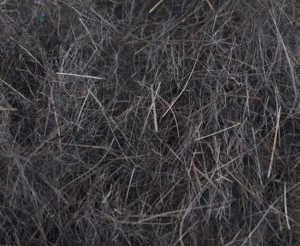 Bild på Swiss CDC Argentinian Hare Dubbing Dark Dun