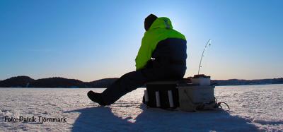 Vintrig artjakt på Gullmarsfjorden | Fiskeprofessorn