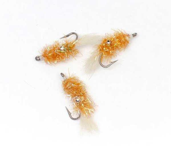 Bild på Cactus Shrimp Gold #4