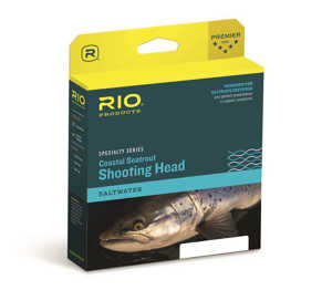 Bild på Rio Coastal Seatrout Shooting Head Hover #7/8