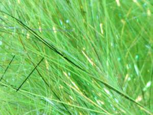Bild på SSS Glitz Hot Greenlander Green