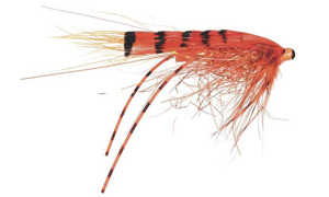 Bild på Frödin Micro Series Tubflugor (1,5cm) G.P Special