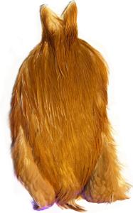 Bild på Whiting/Feathermaster Tuppnacke Ginger