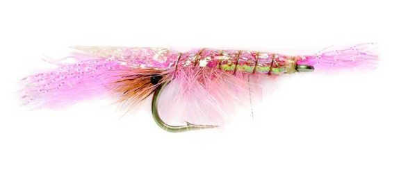 Bild på Flashback Shrimp Pink #4