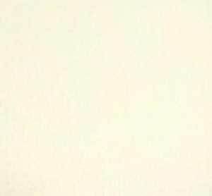 Bild på Fly-Rite Poly II Dubbing Material White