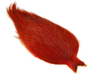 Bild på Whiting Coq de Leon Rooster Cape Badger Orange