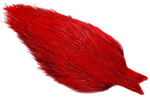 Bild på Whiting Coq de Leon Rooster Cape Badger Red