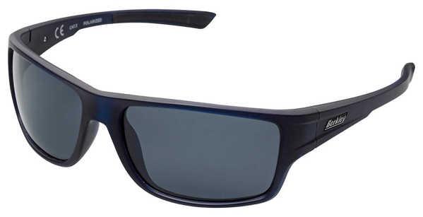 Bild på Berkley B11 Sunglasses Black/Grey