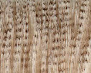 Bild på A.Jensen Super Select Craft Fur Grizzly Sand