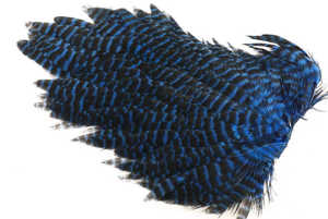 Bild på Ewing Hen Saddle #1 Grizzly Kingfisher Blue