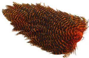 Bild på Ewing Hen Saddle #1 Grizzly Orange