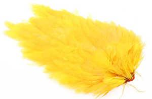 Bild på Ewing Hen Saddle #1 Yellow