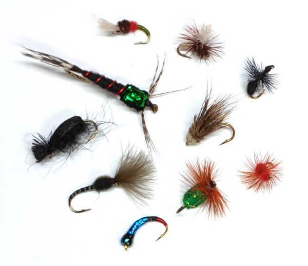 Bild på Höstflugor Special